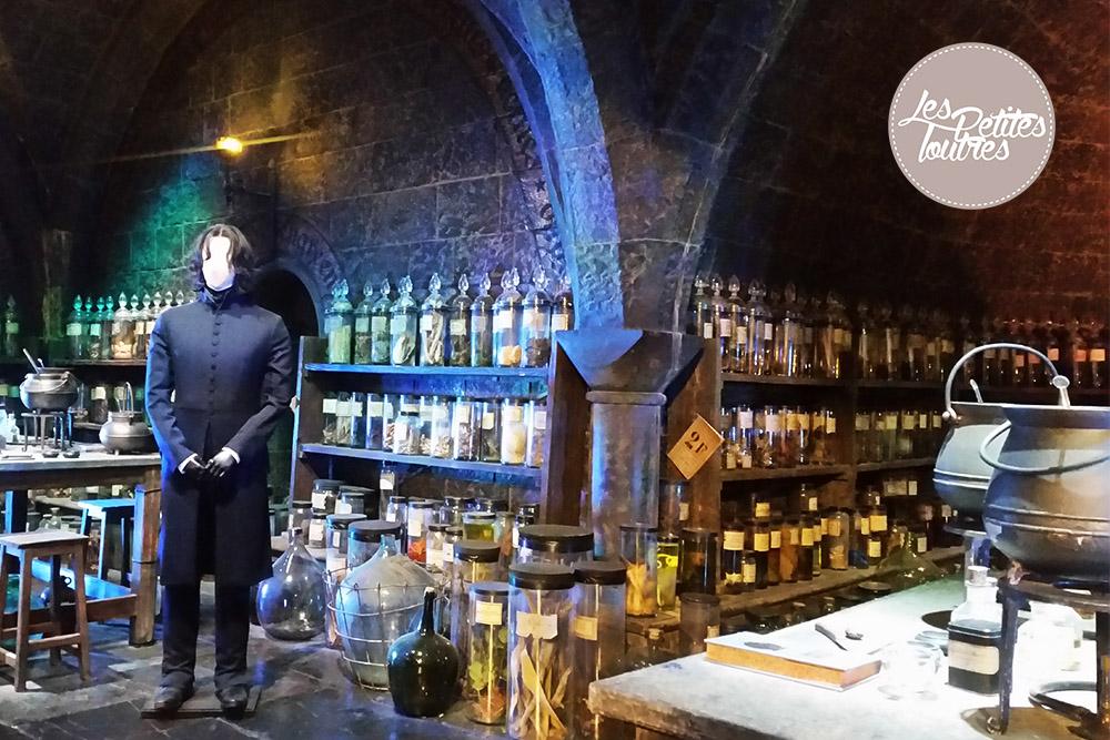 Harry-Potter-Sortileges-Enchantements-Rogue